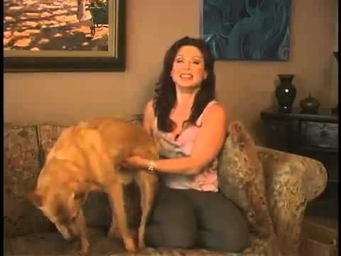 Dog Lady Sex   YouTube