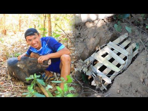 เอาชีวิตรอด ทำกับดักดักหมูป่า ในพม่า
