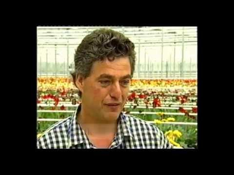 1998 Ethnic Business Awards Finalist – Small Business Category – Bert & Margriet Rijk – Silvandale Nurseries