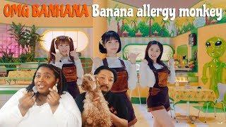 Video Oh My Girl Banhana Banana Allergy Monkey MV | Couple Reaction| MP3, 3GP, MP4, WEBM, AVI, FLV Juli 2018