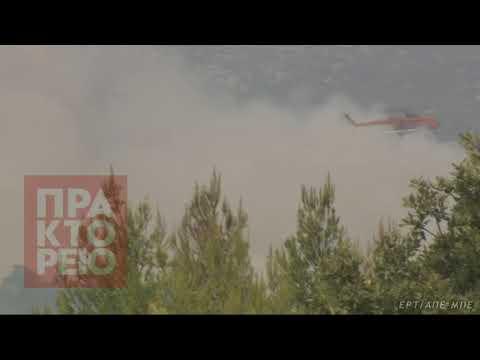 Με αμείωτη ένταση η πυρκαγιά στο μέτωπο του Μικροχωρίου
