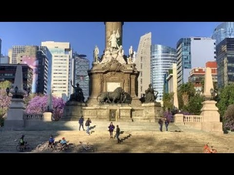The Beauty Strip of Mexico City