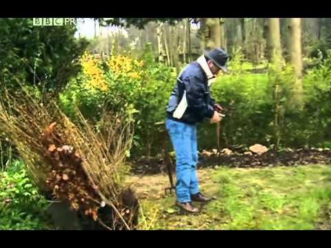 gardener -