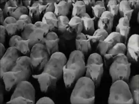 histoire des arts les temps modernes de chaplin le de mgouralnik