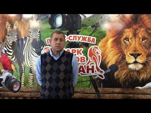 Парк львов Тайган закрыт