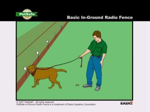 Training RadioFence