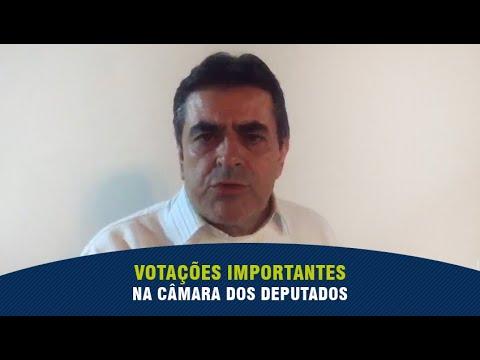 Domingos Sávio destaca aprovações importantes na Câmara dos Deputados