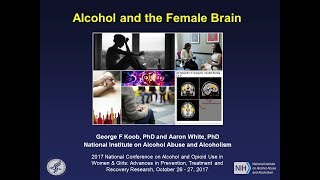 Nonton Alcohol and the Female Brain Film Subtitle Indonesia Streaming Movie Download