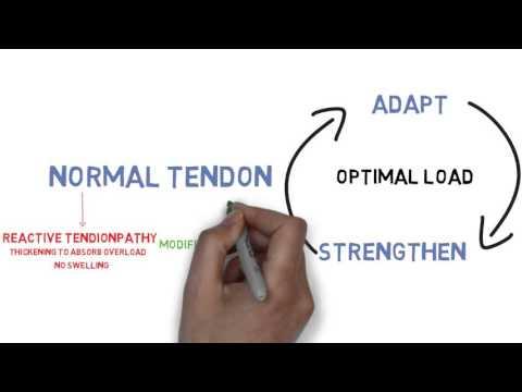 The Tendionpathy Continuum