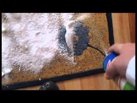 Test Teppich reinigen mit Schaum