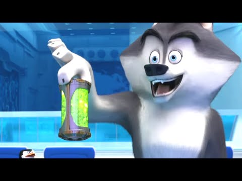 Wind - PENGUINS OF MADAGASCAR -