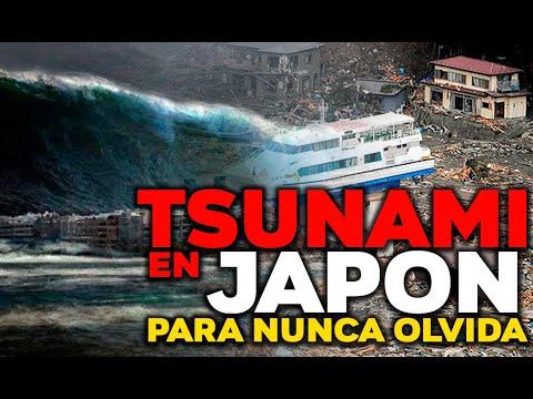 INCREIBLES IMAGENES DE TSUNAMI EN JAPON