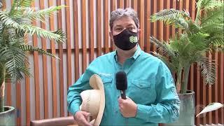 Leilões virtuais ganham espaço durante a pandemia
