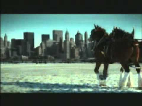 TV Commercial: Budweiser 9/11 Respect Ad
