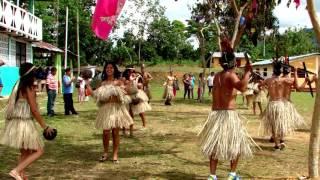 resumen 2015 Municipalidad Distrital de Pumahuasi