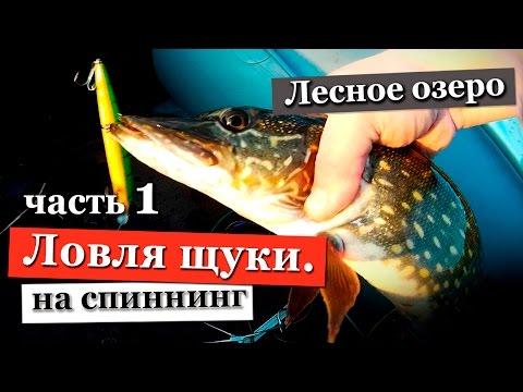 на что ловить в ленинградской области