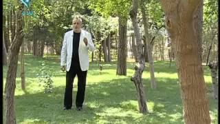Alireza Bahmani - Salam