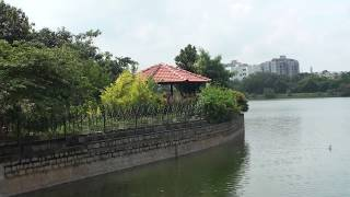 Kaigondanahalli lake in Bangalore. This is surrounded by lush green plants and trees. Many apartments and residential buildings also seen in the background of this lake. Sighting of water birds specially Indian Cormorant is a delightful experience.