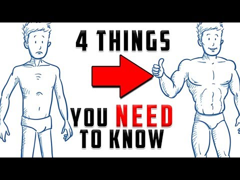 Fat burner - VShred  4 Things YOU Should Know Before Working Out