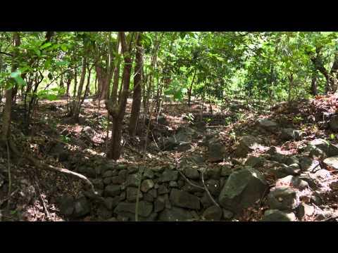 Chinandega Norte, Nicaragua. Desarrollo agropecuario.