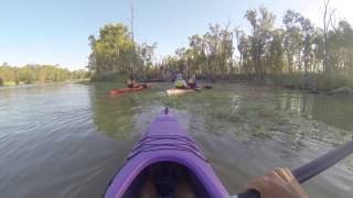 Loxton Australia  city images : canoeing near loxton south australia