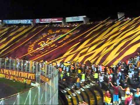 Revolución Vinotinto Sur 2014 (Deportes Tolima 2 - Santa Fe 0) - Revolución Vinotinto Sur - Tolima