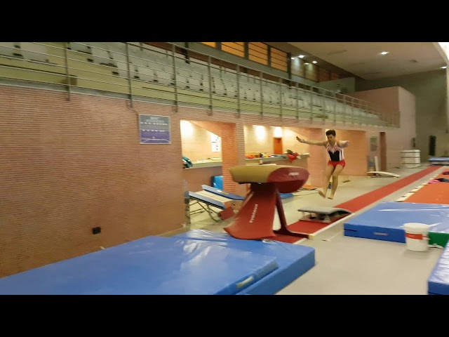 Salto – Paloma Medio Giro