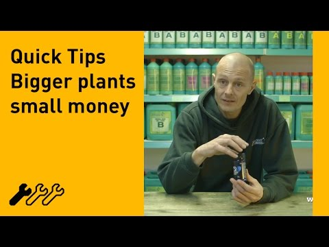 #48 – How to increase your hydroponic yield Part 3, a quick tip with Southcoast Hydroponics