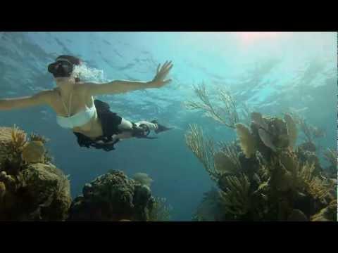 GoPro HD - Shark Riders
