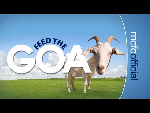 Video: FEED THE GOAT | How many can the City EDS get out of ten?