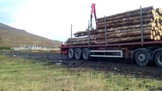 Letterfinlay United Kingdom  City pictures : Ferguson Transport Spean Bridge Ltd