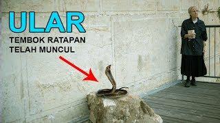 Video Tanda Kiamat Sudah Muncul di Tembok Ini MP3, 3GP, MP4, WEBM, AVI, FLV November 2018