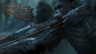 In War for the Planet of the Apes, the third chapter of the critically acclaimed blockbuster franchise, Caesar and his apes are forced into a deadly conflict with an army of humans led by a ruthless Colonel.  After the apes suffer unimaginable losses, Caesar wrestles with his darker instincts and begins his own mythic quest to avenge his kind.  As the journey finally brings them face to face, Caesar and the Colonel are pitted against each other in an epic battle that will determine the fate of both their species and the future of the planet.In Theaters - July 14, 2017Directed By Matt ReevesCast: Andy Serkis, Woody Harrelson, Steve Zahn, Amiah Miller, Karin Konoval, Judy Greer and Terry NotarySUBSCRIBE: http://bit.ly/FOXSubscribeWatch the Final Trailer: http://fox.co/APESFINALTRAILERWatch the Official Trailer: http://fox.co/warfortheplanettrailerWatch the Teaser Trailer: http://fox.co/warfortheplanetWitness the End: http://fox.co/WitnessTheEndWatch the Compassion video: http://fox.co/CompassionMeet Nova: http://fox.co/MeetNovaVisit the Official Site Here: http://WarForThePlanet.comLike War for the Planet of the Apes on FACEBOOK: http://fox.co/ApesFacebookFollow War for the Planet of the Apes on TWITTER: http://fox.co/ApesMoviesTwitterFollow War for the Planet of the Apes on INSTAGRAM: http://fox.co/ApesMoviesInstagram#WarForThePlanetWatch Dawn of the Planet of the Apes and Rise of the Planet of the Apes on Blu-ray, DVD, & Digital HD: http://www.foxdigitalhd.com/dawn-of-the-planet-of-the-apesAbout 20th Century FOX:Official YouTube Channel for 20th Century Fox Movies. Home of Avatar, Aliens, X-Men, Die Hard, Deadpool, Ice Age, Alvin and the Chipmunks, Rio, Peanuts, Maze Runner, Planet of the Apes, Wolverine and many more.Connect with 20th Century FOX Online:Visit the 20th Century FOX WEBSITE: http://bit.ly/FOXMovieLike 20th Century FOX on FACEBOOK: http://bit.ly/FOXFacebookFollow 20th Century FOX on TWITTER: http://bit.ly/TwitterFOXFollow 20th Century FOX on INSTAGRAM:
