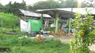 Saung Domba International YouTube video