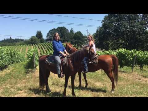 Horse Riding Near Portland Oregon