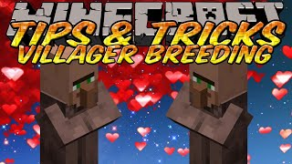 Minecraft Tips and Tricks - Easy houses for villager breeding - How to choose good villager part 1