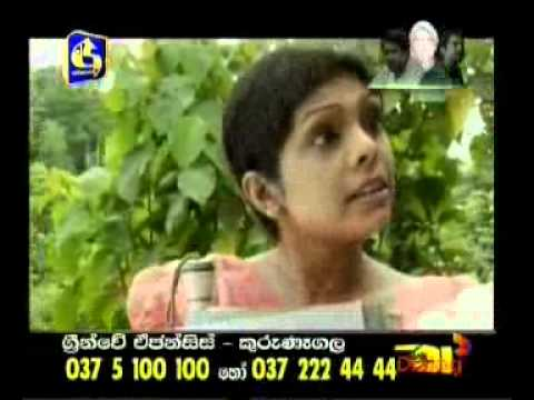 යය || Sepalika Sinhala Teledrama || Episode - || 2012-06-20