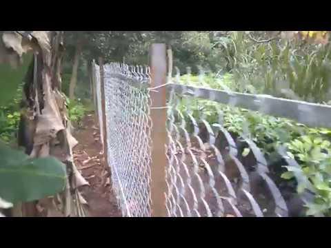 Chi phí làm hàng rào lưới B40