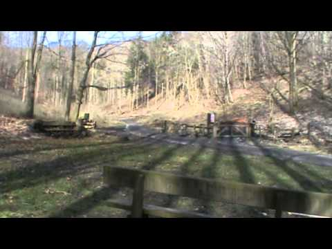 Millington Woods and Millington Dale Round | north yorkshire  Walks