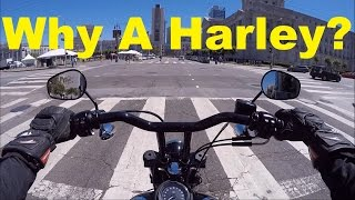 9. Ride What You Like & Ride It Well - 2015 HD Dyna Street Bob FXDB