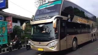Video [HD] Bus SDD Putera Mulya Bonus Telolet & Konvoi Bus Wisata MP3, 3GP, MP4, WEBM, AVI, FLV Desember 2017