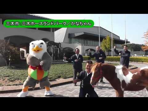 恋するフォーチュンクッキー兵庫県北播磨Ver