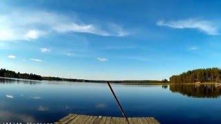 Утро в Карелии 2015. Лето. озеро Лексозеро.