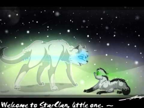 Warrior Cats Thistleclaw And Snowfur Warrior cats thistleclaw and