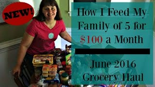 NEW! How I Feed My Family of 5 for $100 a Month- June 2016 Haul
