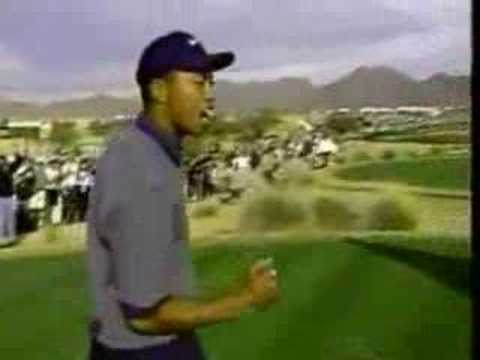 Amazing Shot - Ace - Tiger Woods
