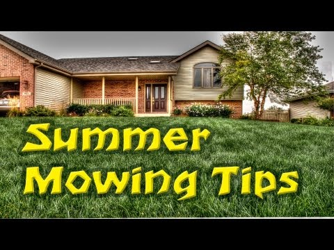 LawnCareMidwest - Let's talk about mowing your lawn a little taller during the summer and why. These summer time lawn mowing tips are simple but important. http://lawncaremidw...