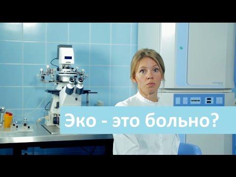 Больно ли делать ЭКО. Лечебный Центр о болезненности процедуры ЭКО.