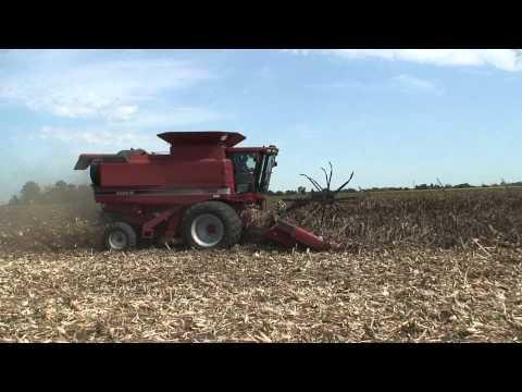 Combine Corn Reel in Down Corn by Meteer Manufactuing
