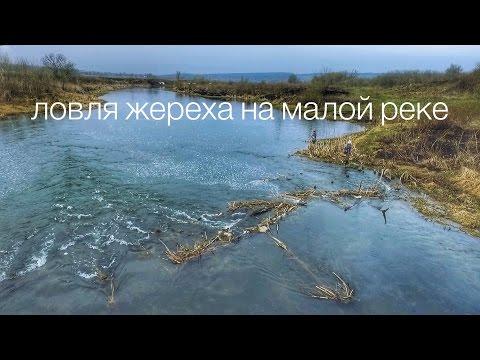 рыбалка в черном потоке 2016